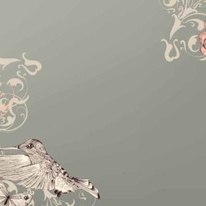 Beautiful vector background with butterflies in vintage style