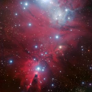 NGC 2264 and the Christmas Tree cluster*